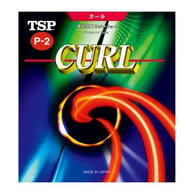 カールP-2 ソフト