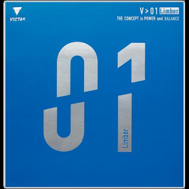 V>01 TSP 裏ソフト 卓球用語集 ラバー 卓球 VICTAS JOURNAL