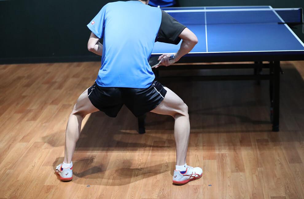ファルケンベリ(2本1本) 脚 卓球